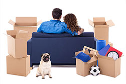 How to Choose A Mover for Your Upcoming Relocation?