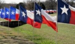 The Ultimate Moving Guide to Texas